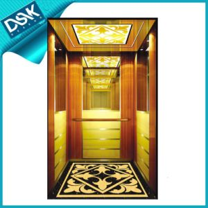 Dsk Passenger Elevator for Hotel Elevator pictures & photos