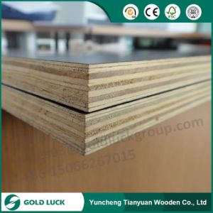 18mm Waterproof Construction Use Laminated Marine Plywood pictures & photos