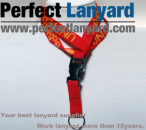 ID Card Holder Lanyard with Jacquard Weave Logo pictures & photos