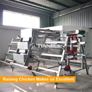 H type pullet Atomatic cage baby chicken poultry farm equipment pictures & photos