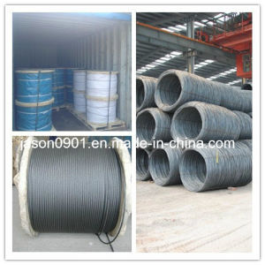 1X19 Stainless Steel Wire Rope, Steel Wire Rope pictures & photos