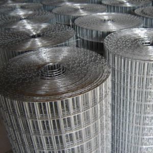 New Standard Steel Fence Mesh for Sale pictures & photos
