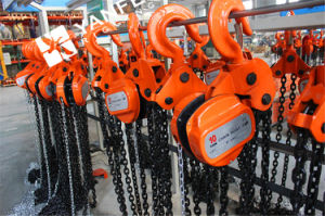 1 Ton Toyo Type Manual Chain Block pictures & photos
