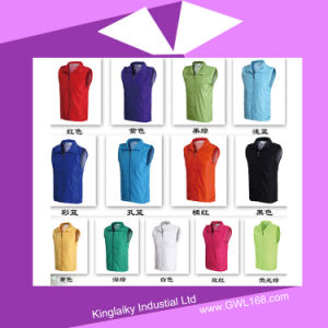 Cheap Customized Volunteer Vest for Activity P016-013 pictures & photos