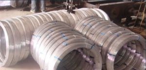 Hot Dipped Galvanized Oval Shaped Steel Wire pictures & photos