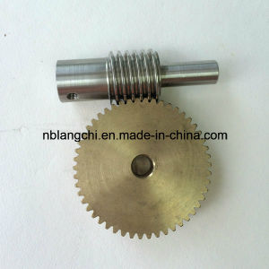 Set Transmission Parts Worm and Worm Gear M=1 pictures & photos