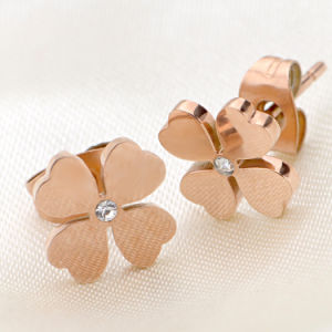 Stainless Steel Jewelry Fashion Jewellery Earring pictures & photos