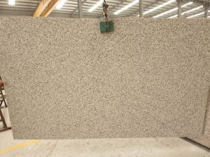 Tiger Skin Yellow Granite Slab for Kitchen Countertops pictures & photos