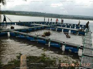 Tilapia Farming/Catfish Farming/Trout Farming/Carp Farming Freshwater Floating Farming Fish Cage pictures & photos