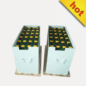 Forklift Battery Storage Battery Auto Starting Battery 4pzs360 pictures & photos
