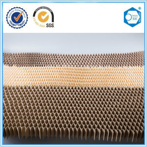 Suzhou Beecore Paper Honeycomb Core Used in Cardboard Honeycomb pictures & photos