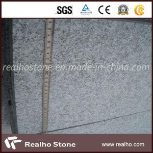 High Quality G603 Granite Slab for Euro Market