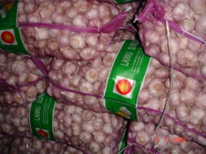 2015 New Fresh Normal White Garlic pictures & photos