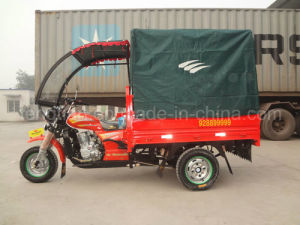 /Cabin Cargo Tricycle pictures & photos
