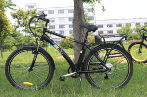 China Cheap Electric City Bike with 36V Rear Lithium Battery pictures & photos