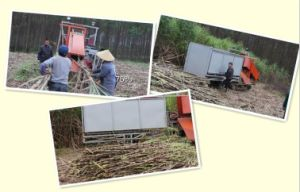 New Product! Automatic Load&Discharge Sugarcane Leaf Peeling Truck
