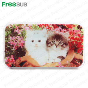 Freesub Weighting Machine, Sublimation Glass Gift (BL-19) pictures & photos