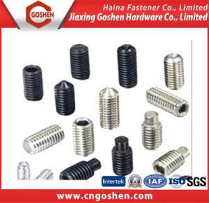 Set Screws DIN913; DIN914; DIN915; DIN916; DIN551 pictures & photos