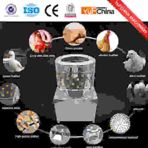 Multifunction Poultry Plucker with Good Price pictures & photos