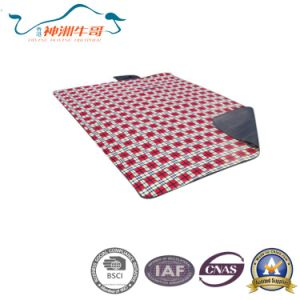 Picnic Mat for Promotion Sale pictures & photos