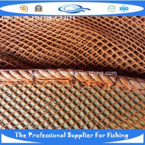 Nylon Net (20121027_144245) pictures & photos