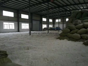 White Duck Down 90% for Stuffing Bedding Lines pictures & photos