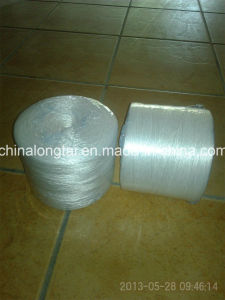 Antiaging PP Hay Baler Twine for Packing pictures & photos