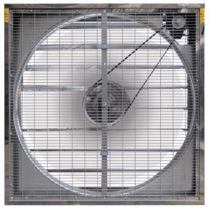 Exhaust fan/axial fan/ventilation fan pictures & photos