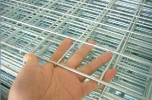 China Manufacturer Galvanized Welded Wire Mesh Panel / Welded Wire Mesh Sheet pictures & photos