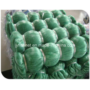 100md Green Nylon Monofilament Fishing Net for UAE, Middle East Market