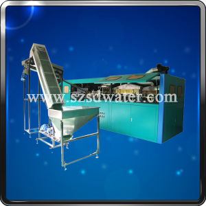 Mineral Water Pet Bottle Automatic Blowing Machine pictures & photos
