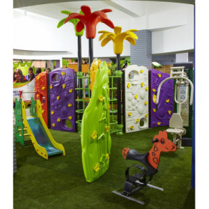 2015 Hot Sale Climbing Outdoor Playground Equipment, Yl-Py009 pictures & photos