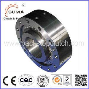 Cam Clutch for Backstop and Overrunning Applications (BR) pictures & photos