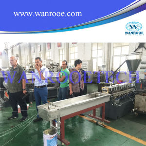 Pet Flakes Pelletizing Production Machine pictures & photos