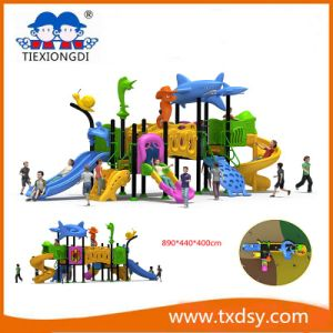China Amusement Park Outdoor Platisc Equipment Txd16-Bh091 pictures & photos