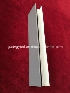 6063 Thermal Insulation Extrusion Aluminium Profiles pictures & photos
