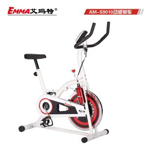 Popular Home Use Spin Bike (S9010L) pictures & photos