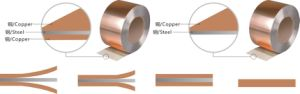 Copper Clad Steel Strip Used Into Copper Gate pictures & photos