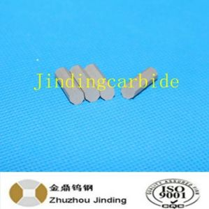 Tungsten Carbide Core Drilling Bit Tips T30 for Oil Field pictures & photos
