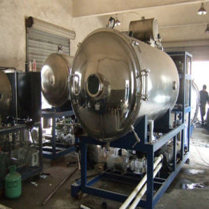10-200 M2 Vacuum Freeze Drying Machine for Food Industry pictures & photos
