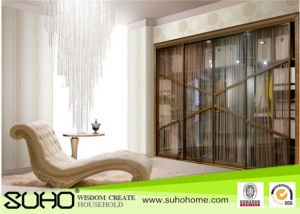 Artistic Design Aluminum Frame Sliding Wardrobe Door