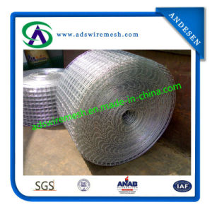 Black Welded Wire Mesh pictures & photos