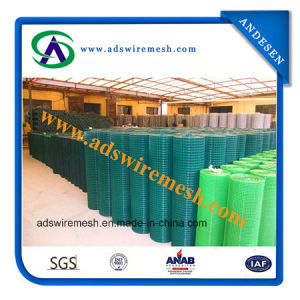 Hot DIP Galvanized /PVC Coated Welded Wire Mesh pictures & photos