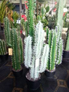 Artificial Plants of Cactus Mexico Style with Balls pictures & photos