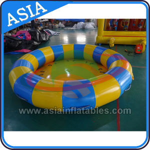 12 Person Plate Boat; Inflatable Disco Plate Boat for Rental pictures & photos