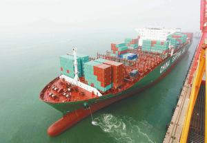 40hq Sea Shipping From Guangzhou Torio Haina