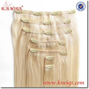 Brazilian Virgin Remy Human Hair Clip in Hair Extension pictures & photos