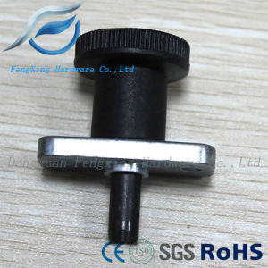 Carbon Steel/Stainless Steel Flange Index Plunger (GN608.1-6-6) pictures & photos