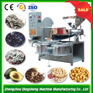 Black Seed Automatic Screw Oil Extruder Machine pictures & photos