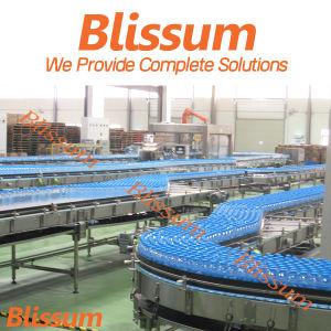 Professinal Manufacturer Natural Water Filling Bottling Packaging Line pictures & photos